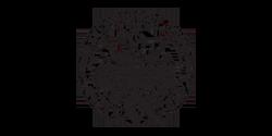 logo_politecnico_to